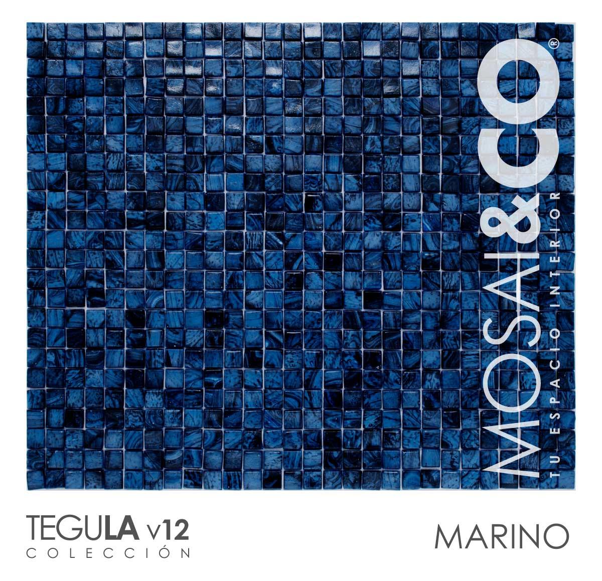 mosaico-interiores-mosaiandco-tegula-v12-marino