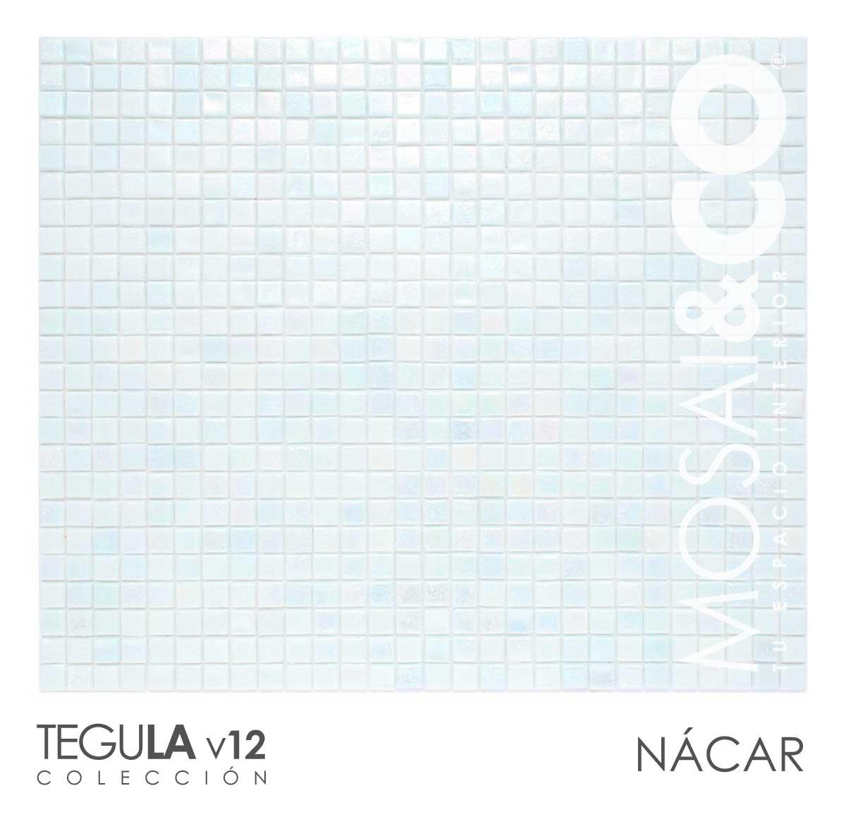 mosaico-interiores-mosaiandco-tegula-v12-nacar
