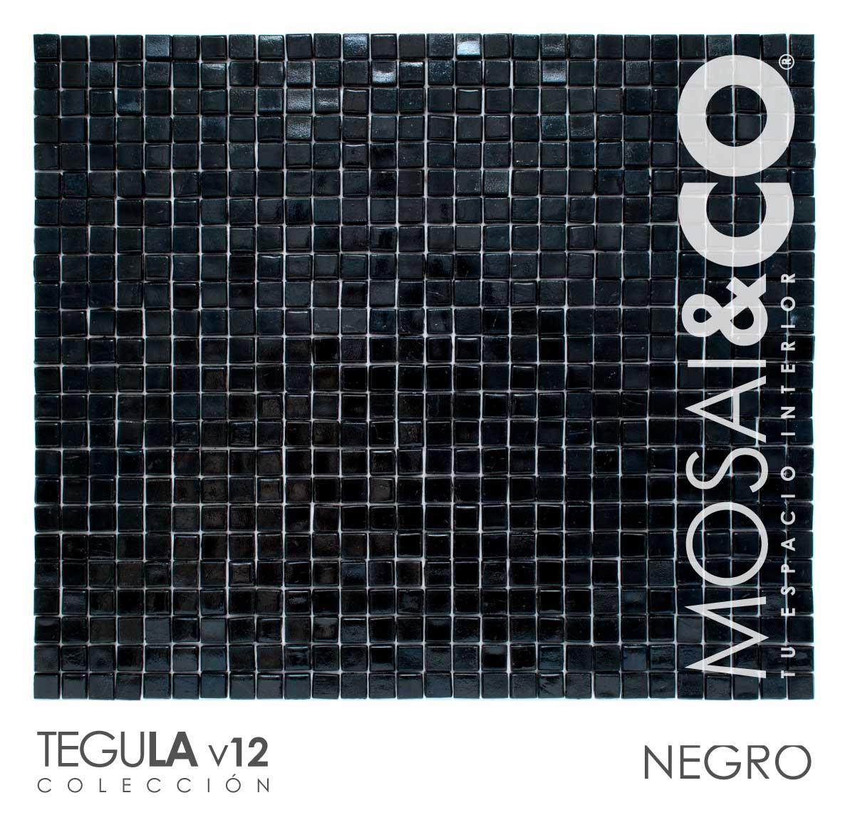 mosaico-interiores-mosaiandco-tegula-v12-negro