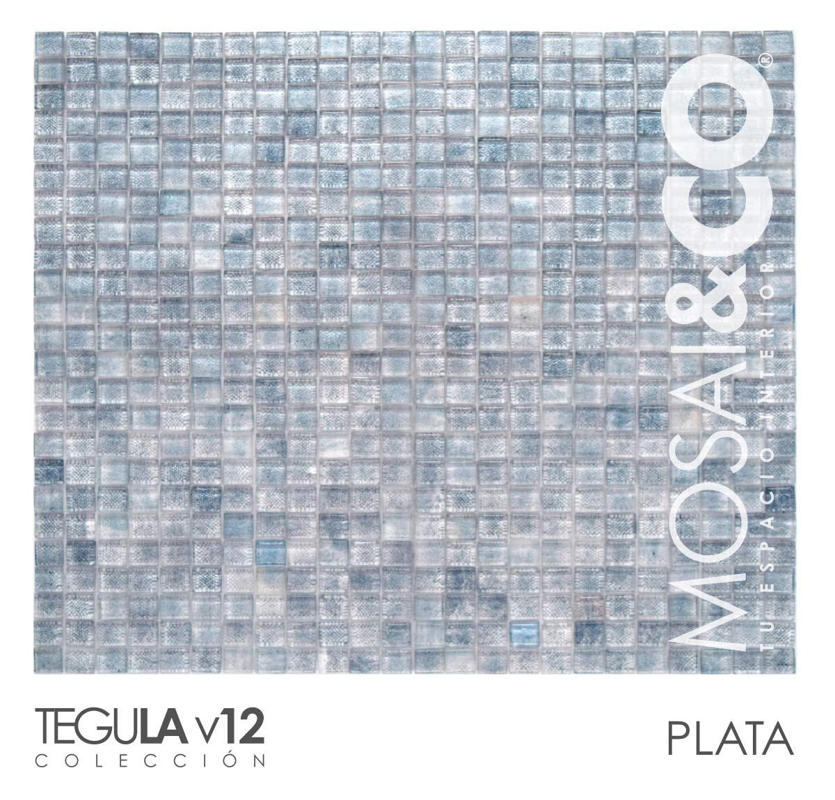 mosaico-interiores-mosaiandco-tegula-v12-plata