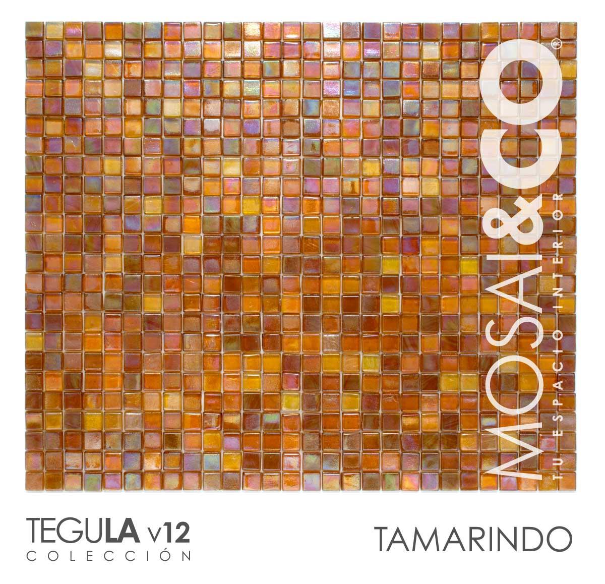 mosaico-interiores-mosaiandco-tegula-v12-tamarindo